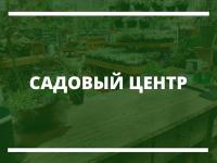 Продвижение сайта садового центра