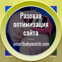 Разовая оптимизация сайта smartbabywatch.com