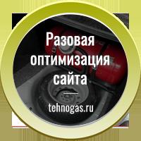 Разовая оптимизация сайта tehnogas.ru