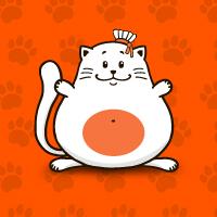 Flash баннер - Прыгающий кот (Баннер для Одноклассники.ру)