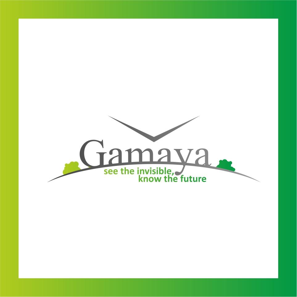 Разработка логотипа для компании Gamaya фото f_4375482d26e7ee6e.jpg