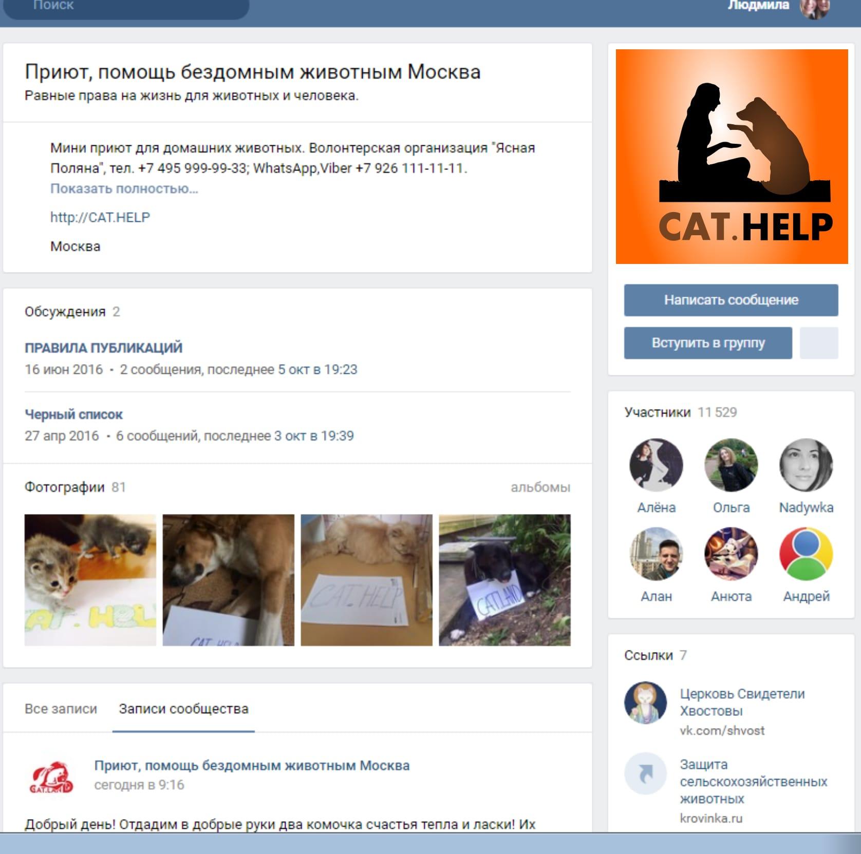 логотип для сайта и группы вк - cat.help фото f_58859dc9af580b69.jpg