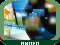 Медиа-импульс для продвижения вирусных видео