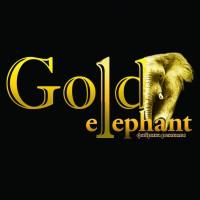 "Логотип рекламного агентства ""Gold elephant"""