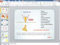 Презентация для тренинговой компании ЗОЖ