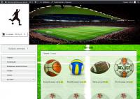 Интернет магазин футбольных товаров на wordpress