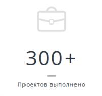 Разработано более 300 проектов.