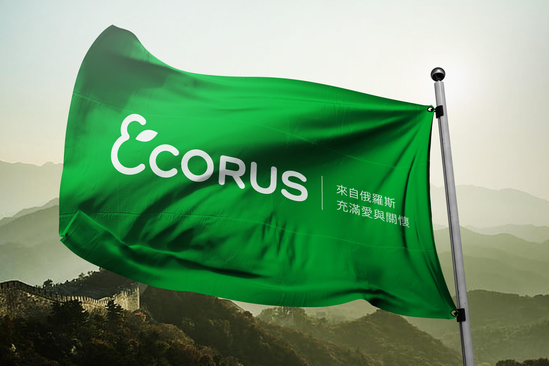 Логотип для поставщика продуктов питания из России в Китай фото f_7425ebbdb328e964.jpg