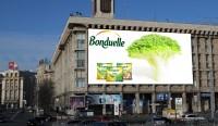 Дизайн брандмауэра для Bonduelle
