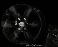 Тюнинг - аэрография автомобильных дисков Black Cat Stile