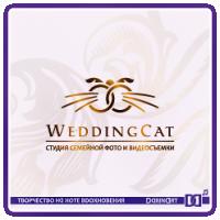 Wedding Cat_студия свадебной видео/фотосъемки