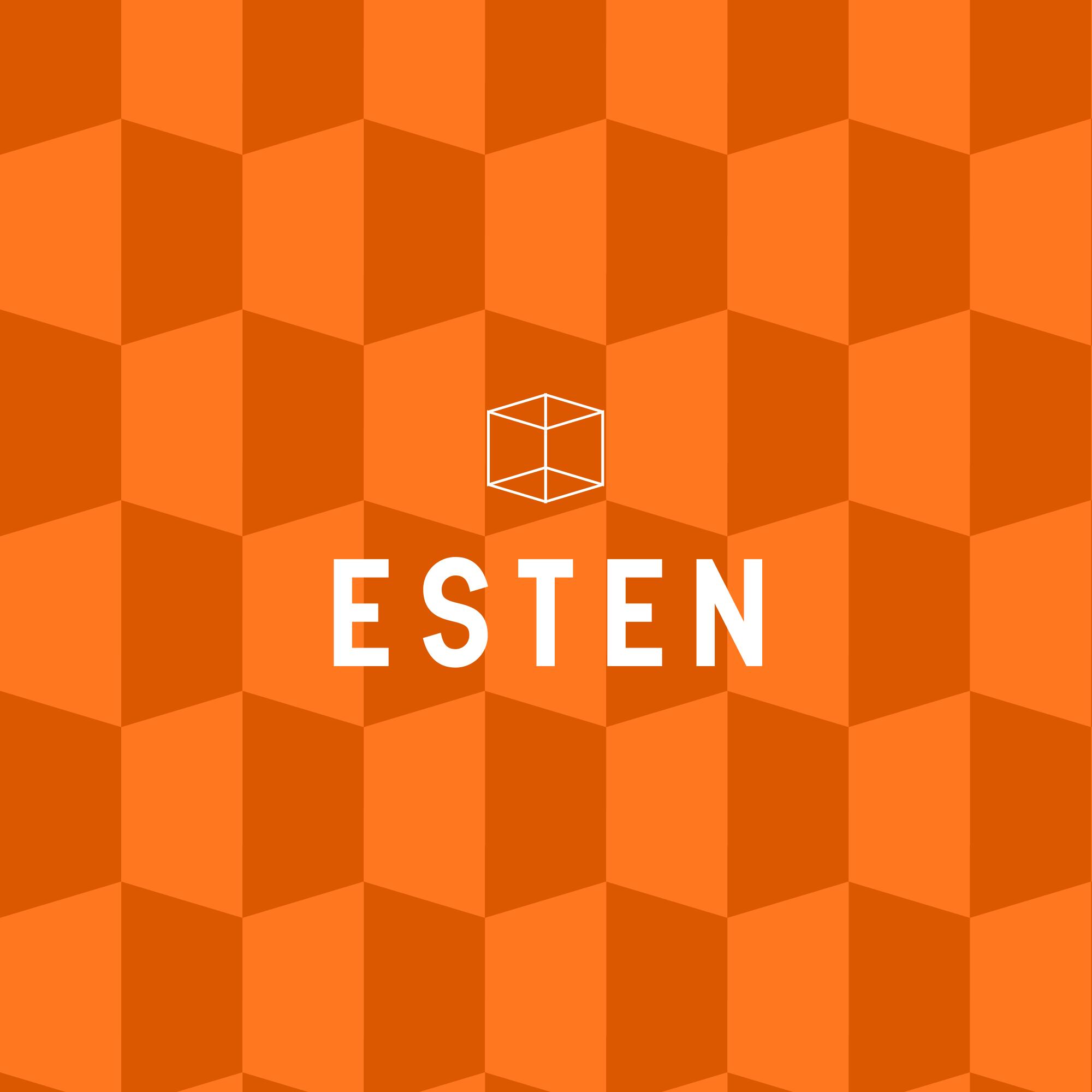 Концепция логотипа ESTEN