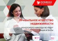 ДОМИАН, презентация по франшизе