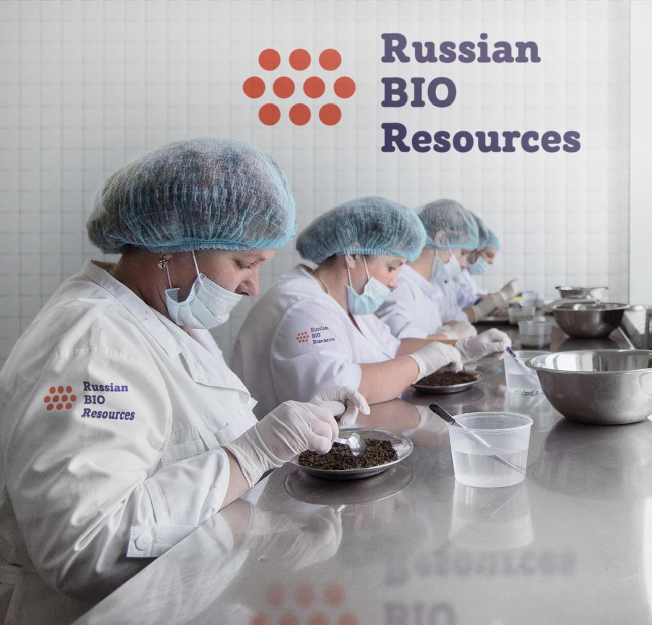Разработка логотипа для компании «Русские Био Ресурсы» фото f_94958fccc096f9d7.jpg