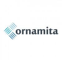 «Ornamita» Декоративная сталь