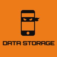 Логотип Data Storage