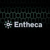 Entheca - новые технологии