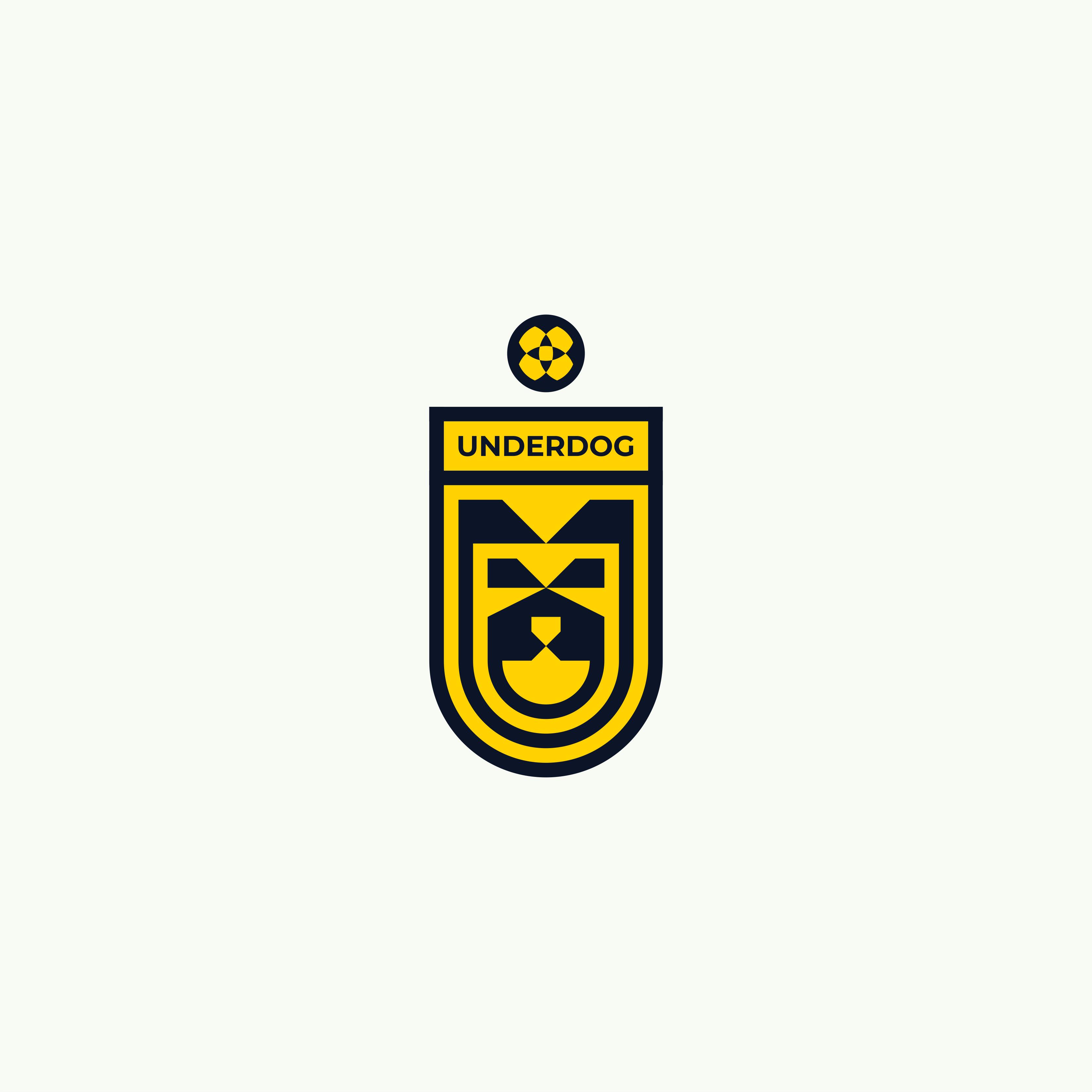 Футбольный клуб UNDERDOG - разработать фирстиль и бренд-бук фото f_0295caf7ee8d679f.png