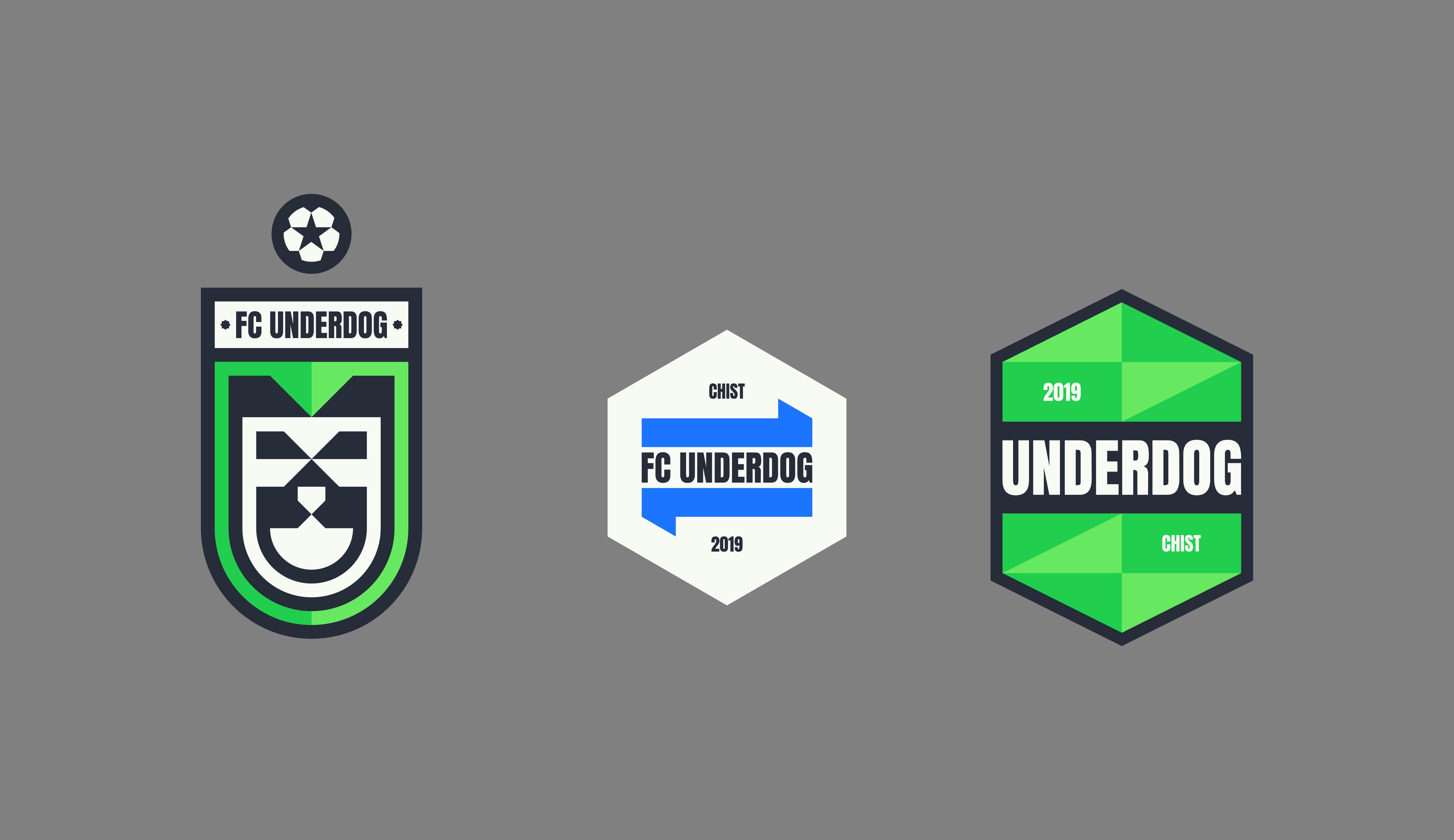 Футбольный клуб UNDERDOG - разработать фирстиль и бренд-бук фото f_6885cb4f05be2e3a.png