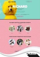 Lending Page салон для животных