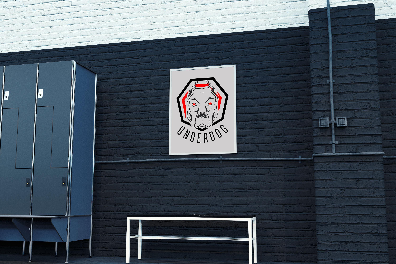 Футбольный клуб UNDERDOG - разработать фирстиль и бренд-бук фото f_2325caf8dfdb424b.jpg