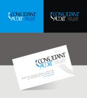 Consultant Audit v.3