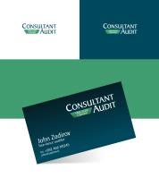 Consultant Audit v.1