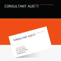 Consultant Audit v.2