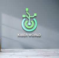 Kiber world