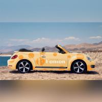Fonion (авто)
