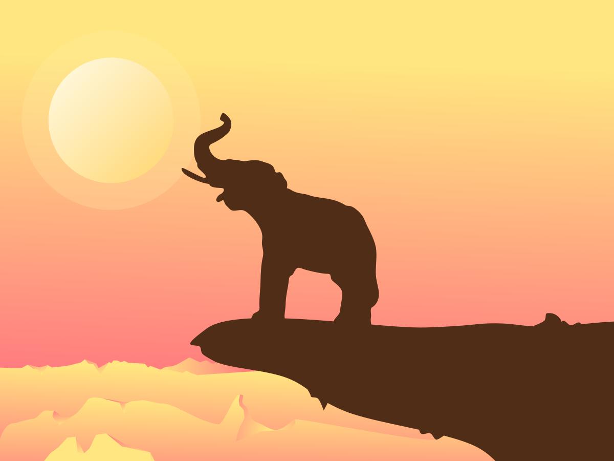 Wilderness illustration