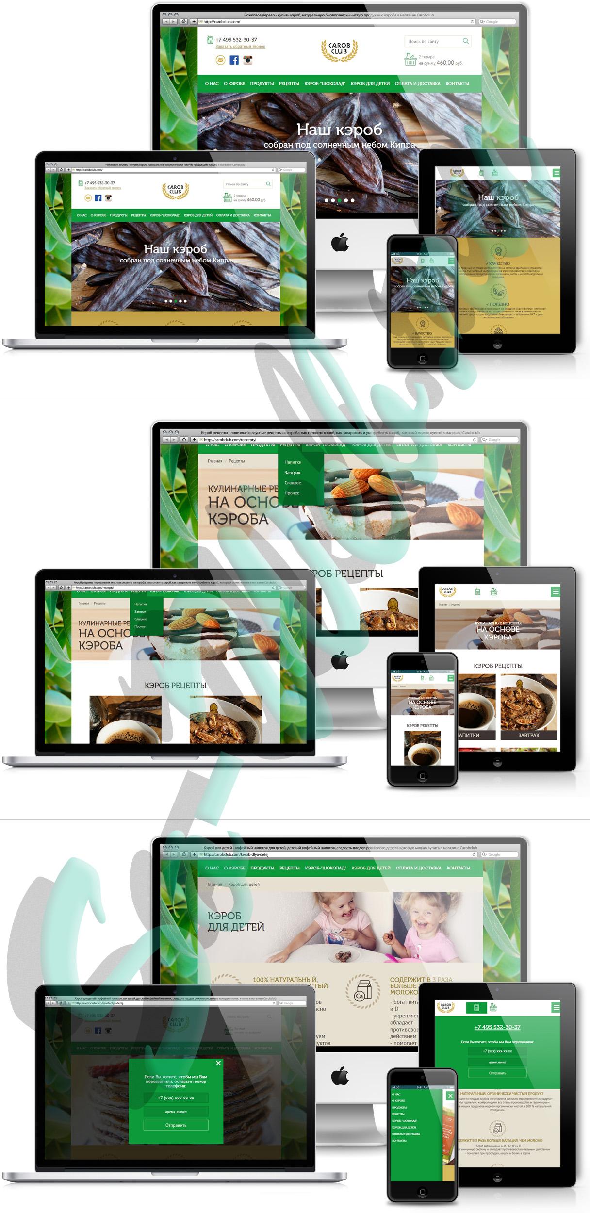 Адаптивная верстка из PSD в HTML для сайта-каталога продуктов из кэроба