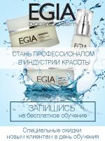 Баннер для сайта Egia