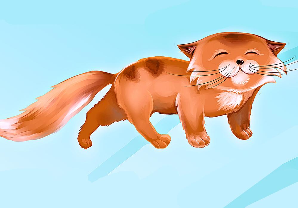 Кот для банера