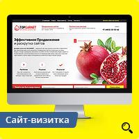 Адаптивный сайт SEO-компании «Top Garnet»