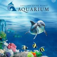 ПРОМО-сайт для Океанариума AQUARIUM