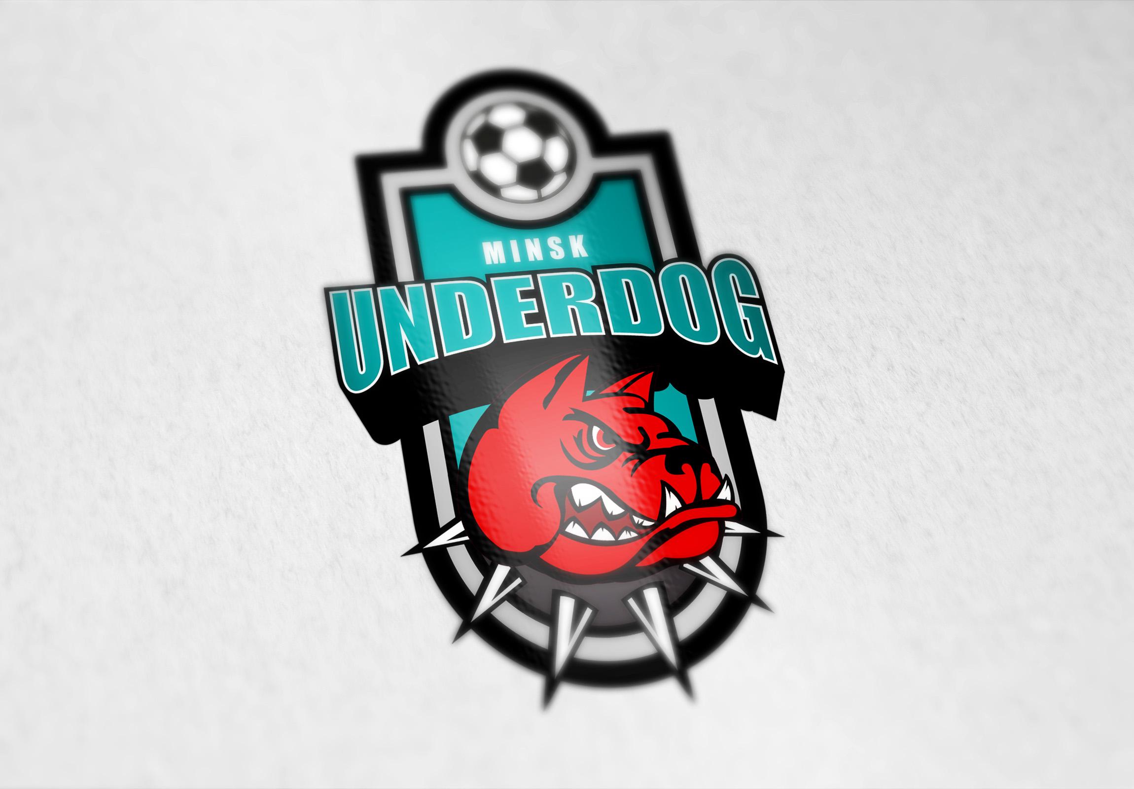 Футбольный клуб UNDERDOG - разработать фирстиль и бренд-бук фото f_6115cb0980aeb6f8.jpg