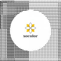 Логотип Socolor (конкурсная работа)