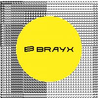 Логотип Brayx (конкурсная работа)