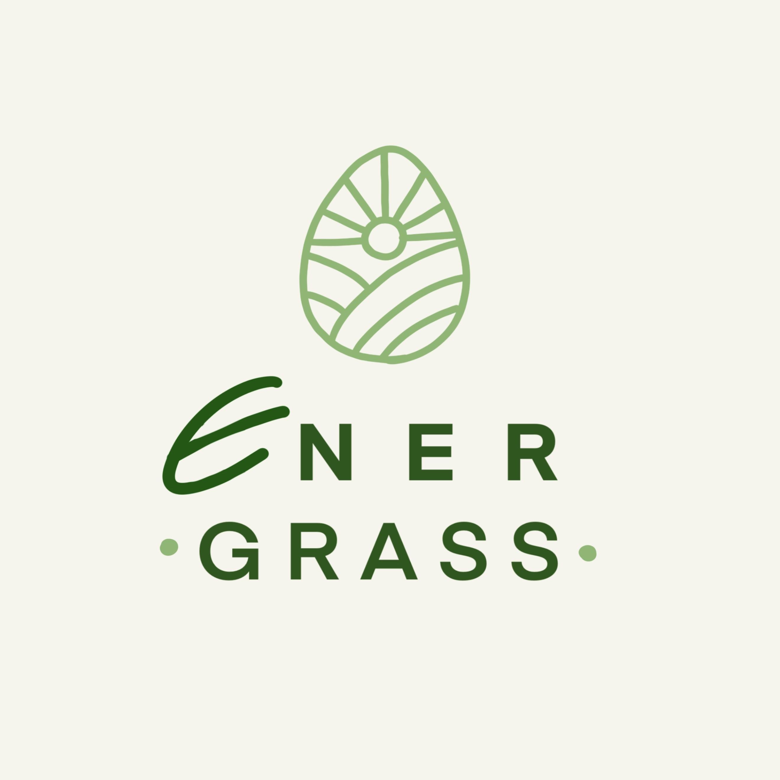 Графический дизайнер для создания логотипа Energrass. фото f_1645f8d9fd1b395e.jpg