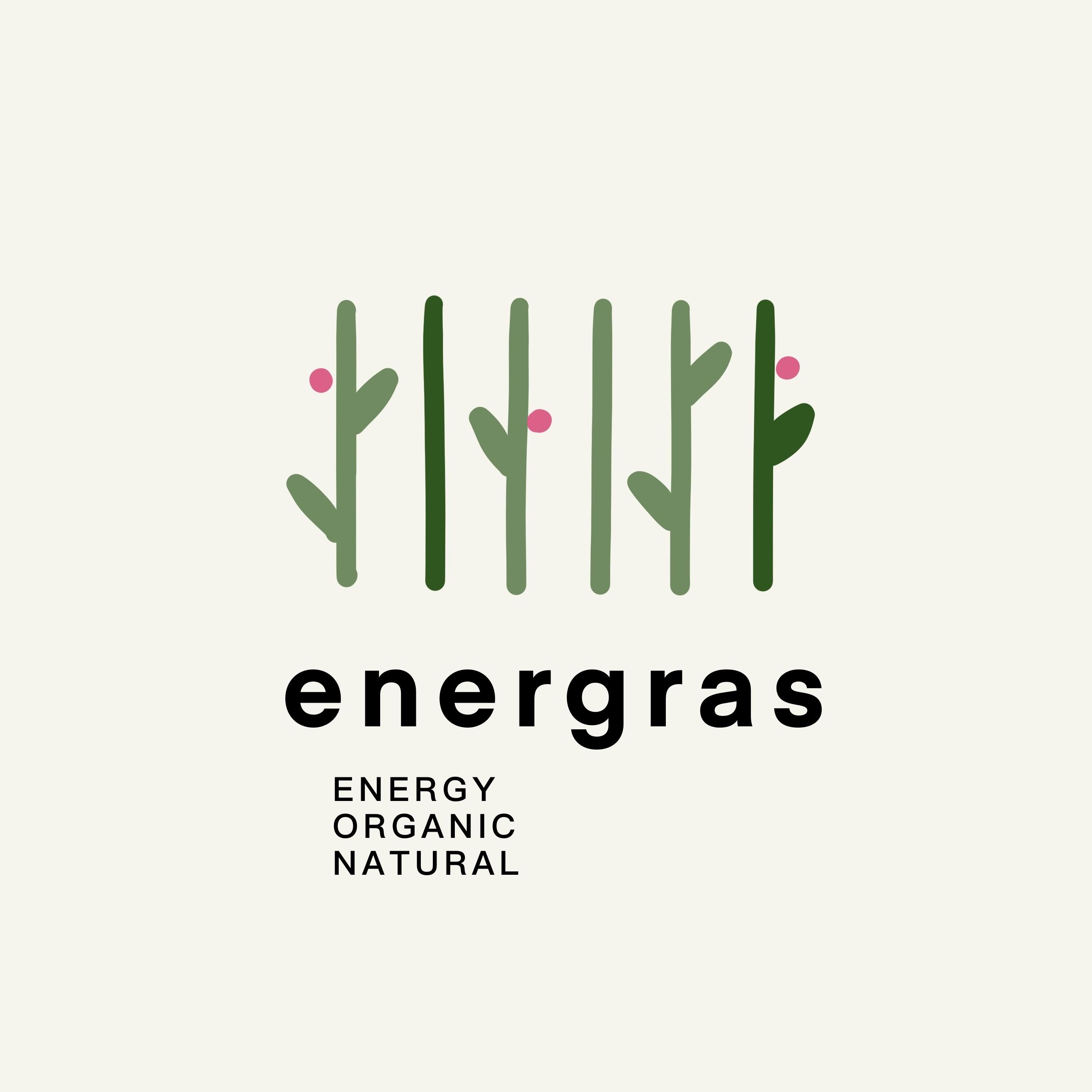Графический дизайнер для создания логотипа Energrass. фото f_1745f8d9fcb7a171.jpg
