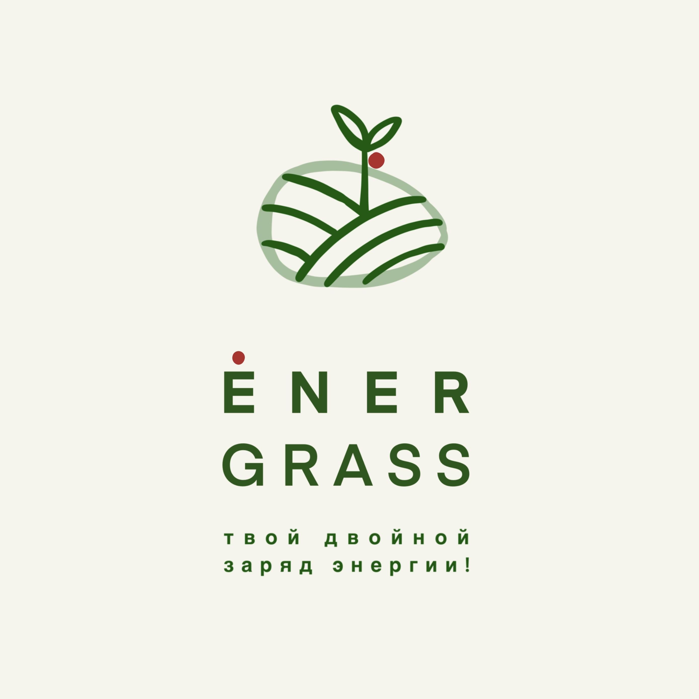 Графический дизайнер для создания логотипа Energrass. фото f_6445f8d9fd7cfb33.jpg