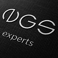 EGS expert