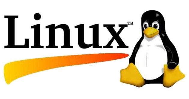 Поддержка серверов Linux