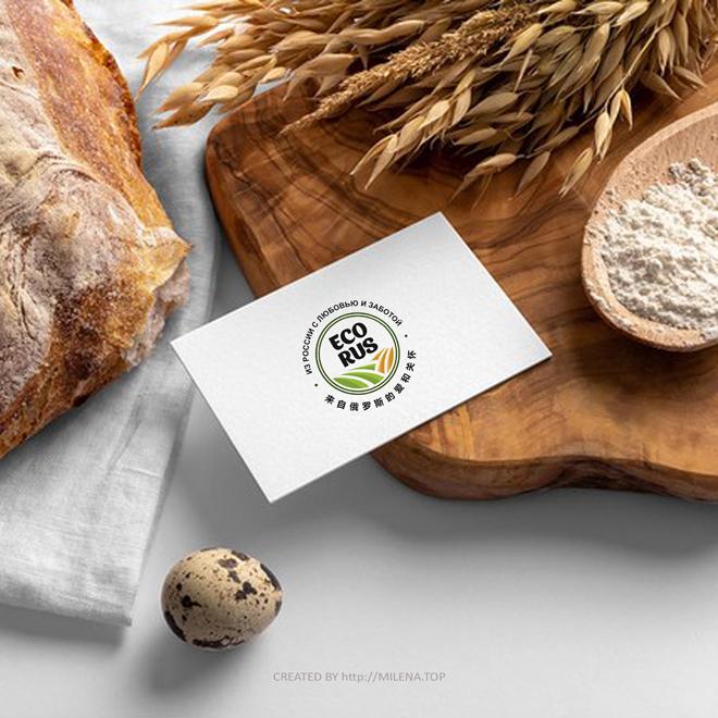 Логотип для поставщика продуктов питания из России в Китай фото f_6735eb11cfdd03f5.jpg