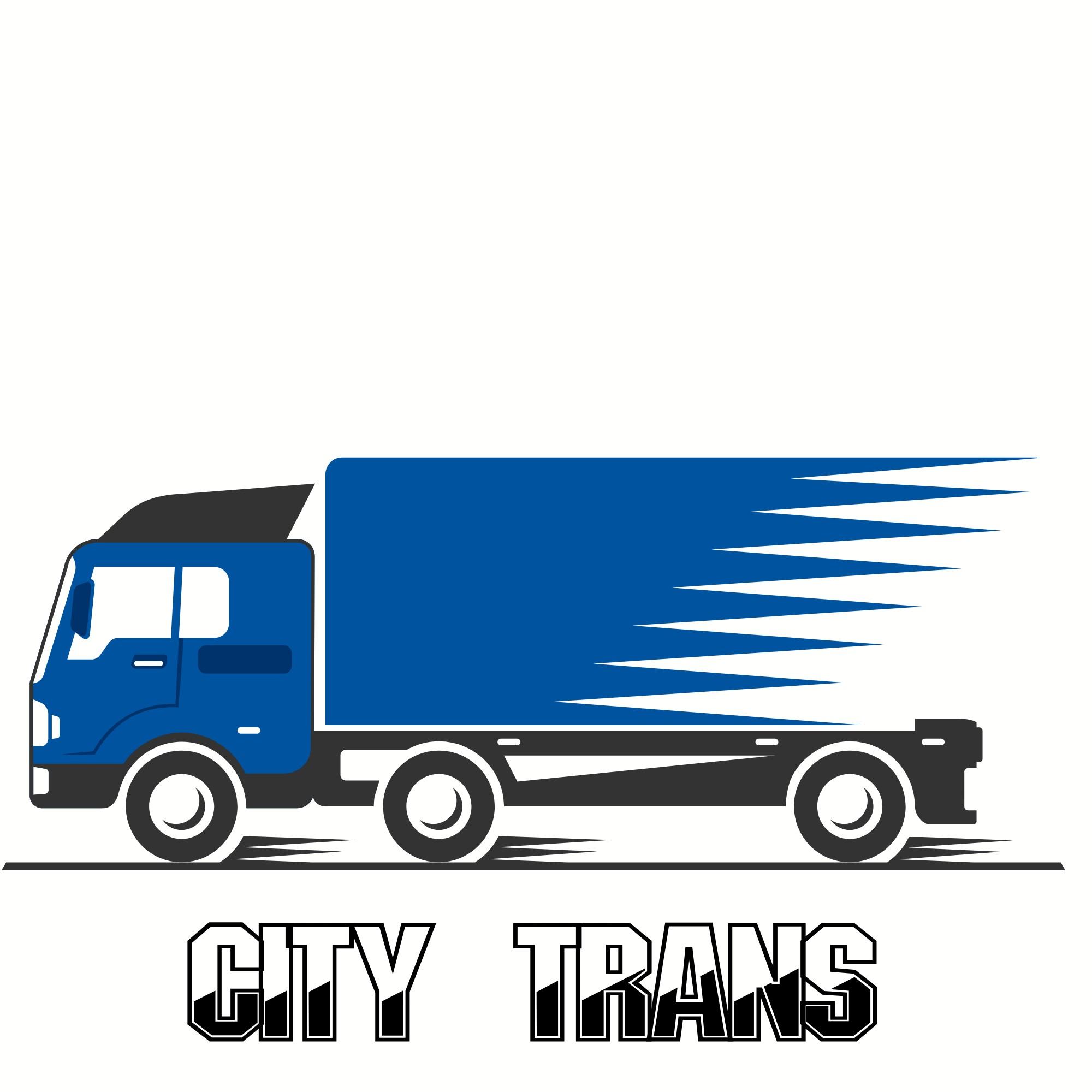 Разработка Логотипа транспортной компании фото f_3185e6ceb1580683.jpg
