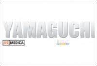 Yamaguchi Electronics Solutions (массажное оборудование)