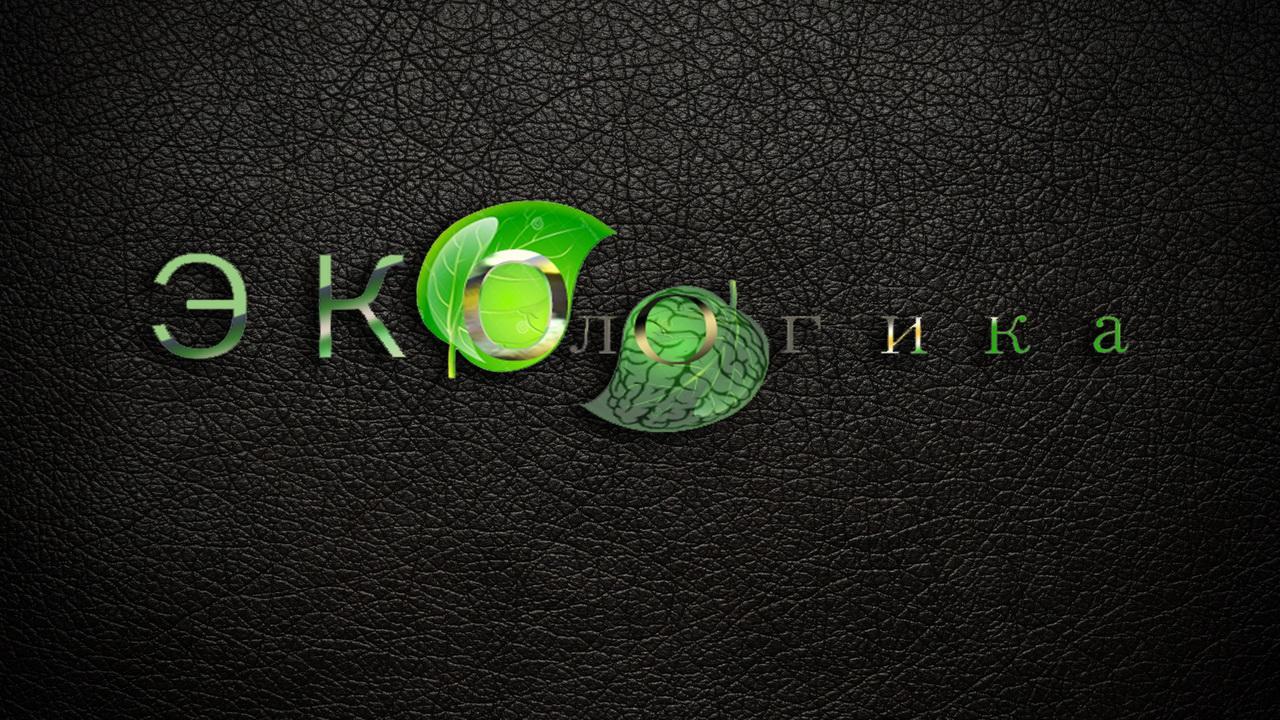 Логотип ЭКОЛОГИКА фото f_365593d84f1f0d96.jpg