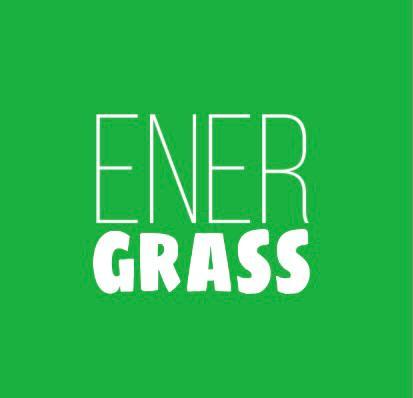 Графический дизайнер для создания логотипа Energrass. фото f_2945f8c742bb5ec2.png
