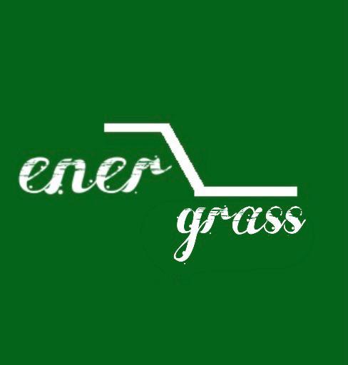 Графический дизайнер для создания логотипа Energrass. фото f_6095f8c74319a5a8.png